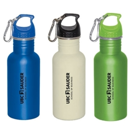 Water bottle - Sauder stainless - 16oz - assorted colours