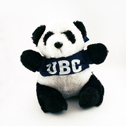 Plush toy - UBC panda bear
