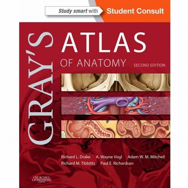 Ubc Bookstore Grays Atlas Of Anatomy