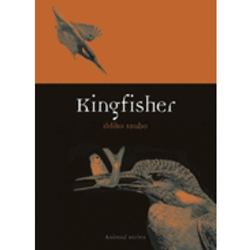 KINGFISHER : REAKTION SERIES