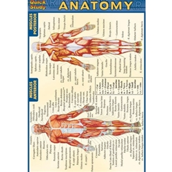 ANATOMY CHART MEDICAL POCKET GUIDE 4 X 6
